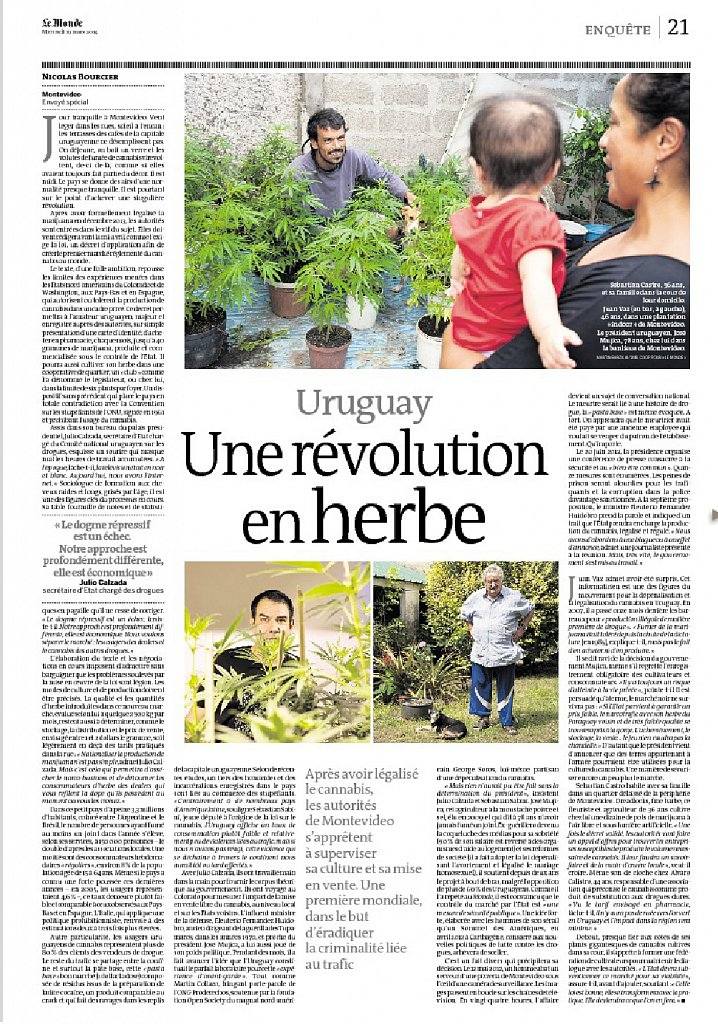 Le Monde - cannabis